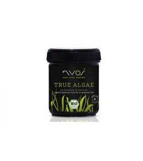 True Algae