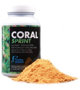 Coral Sprint