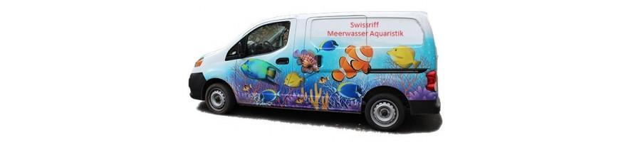 Aquarien Service