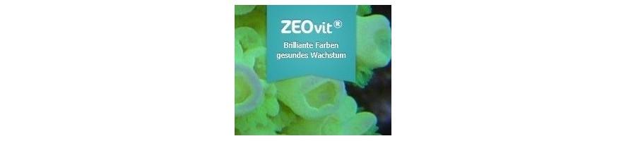 Korallen-zucht.de